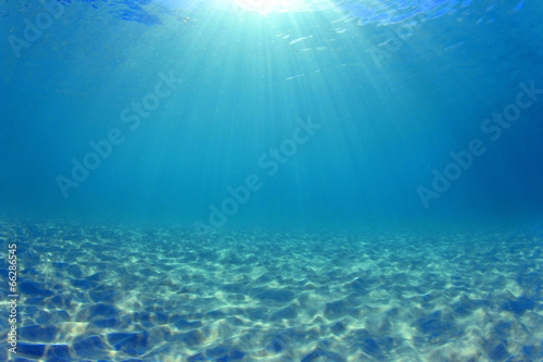 Underwater background - sunlight on ocean floor - 66286545