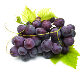 Fresh grape