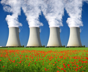 Nuclear power plant with poppy field