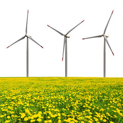 Wind turbines with dandelion field on white