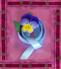 pansy in velure frame