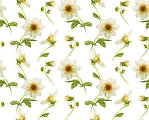 White Dahlia floral seamless watercolor pattern