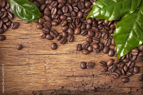 Coffee beans and green leaves - 66295532