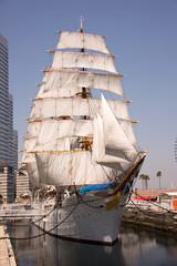 日本丸 総帆展帆 Nippon Maru