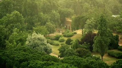 Lluvia parque