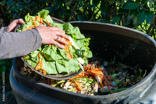 canvas print picture Composting