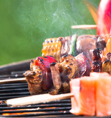 Tasty skewers on garden grill, close-up.