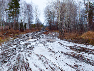 Broken autumn road in Russian forest