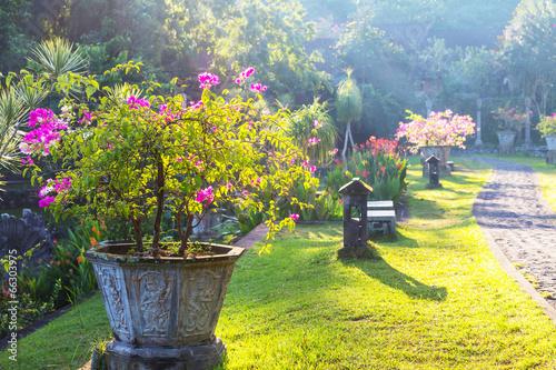 Foto op Plexiglas Indonesië Garden