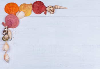 Summer holidays background with seashells and space for text