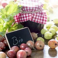 Biomarmelade Stachelbeeren