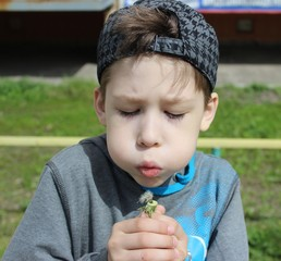 Seven years old boy with dandelion.