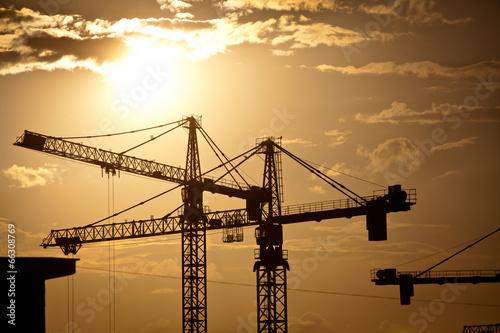 Cranes at dusk - 66308769