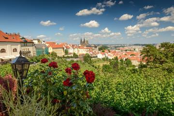 Prague ,Czech Republic.