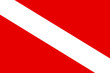 Leinwandbild Motiv Diver down flag