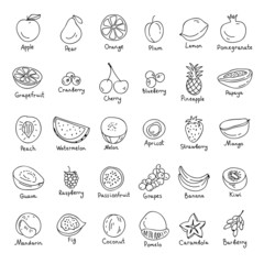Vector set of hand drawn fruit and berries icons