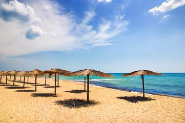 beach with umbrellas in summer bright day