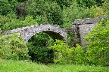 old roman bridge in the forest in italy