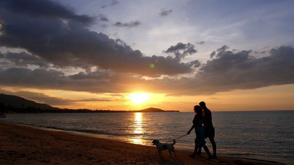 Couple Walking with Dog at Sunset on the Beach. Slow Motion.