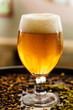 beer in the bar - 66310795
