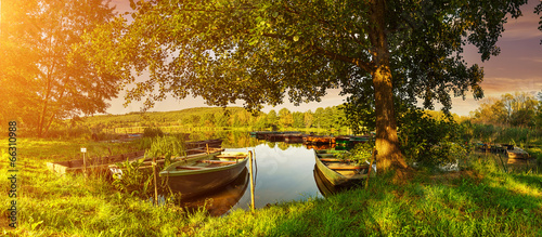 Under the trees, boats in the harbor at Lake