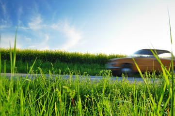 Summer ride, car on road