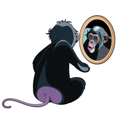 cartoon monkey looking in the mirror