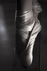 Ballet Point shoes in high contrast