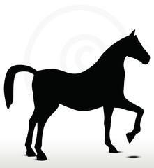 horse silhouette in Show Horse position