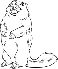 marmot animal cartoon coloring book