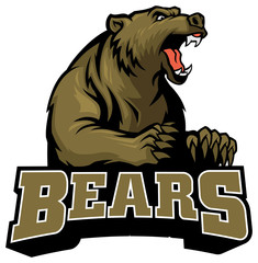 big brown bear mascot