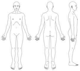 人体略図(性別無し)