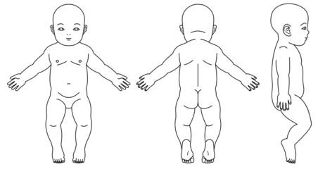 乳児の体の略図