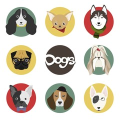 Dog Head Set