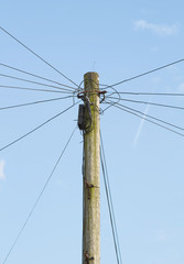Looking up at a telegraph pole