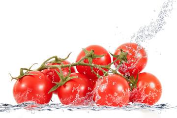 grappolo di pomodori splash