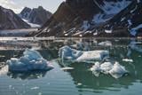 Svalbard Spitzbergen Glacier view with small iceberg