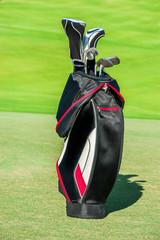 Golf club. Bag with golf clubs