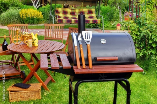 Summer Picnic in the Backyard - 66328927