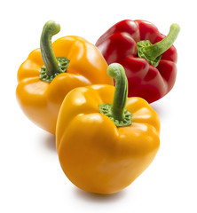Two yellow and one red bell pepper isolated on white background