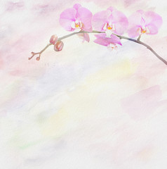 Art floral background with orchid.