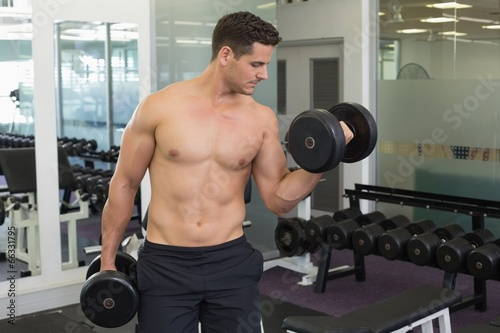 Shirtless focused bodybuilder lifting heavy black dumbbells