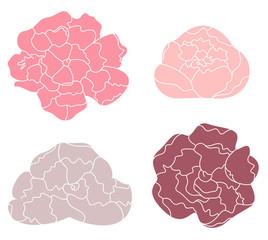 Peony pastel flower set isolated on white