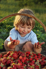 cheerful boy with a basket of berries