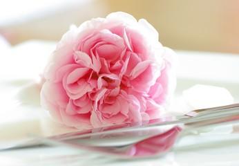 Tischdeko mit Rose