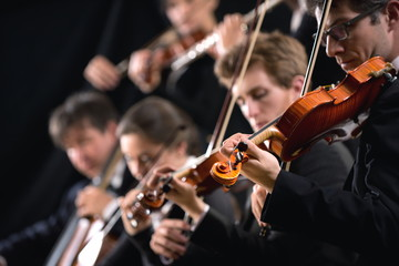Orchestra first violin section © stokkete