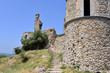 Ruin castle of Grimaud in France