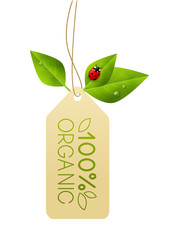 Ecology paper tag with green leaves