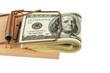 Dollar Geldscheine in Mausefalle