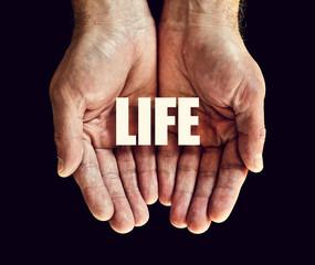 life hands